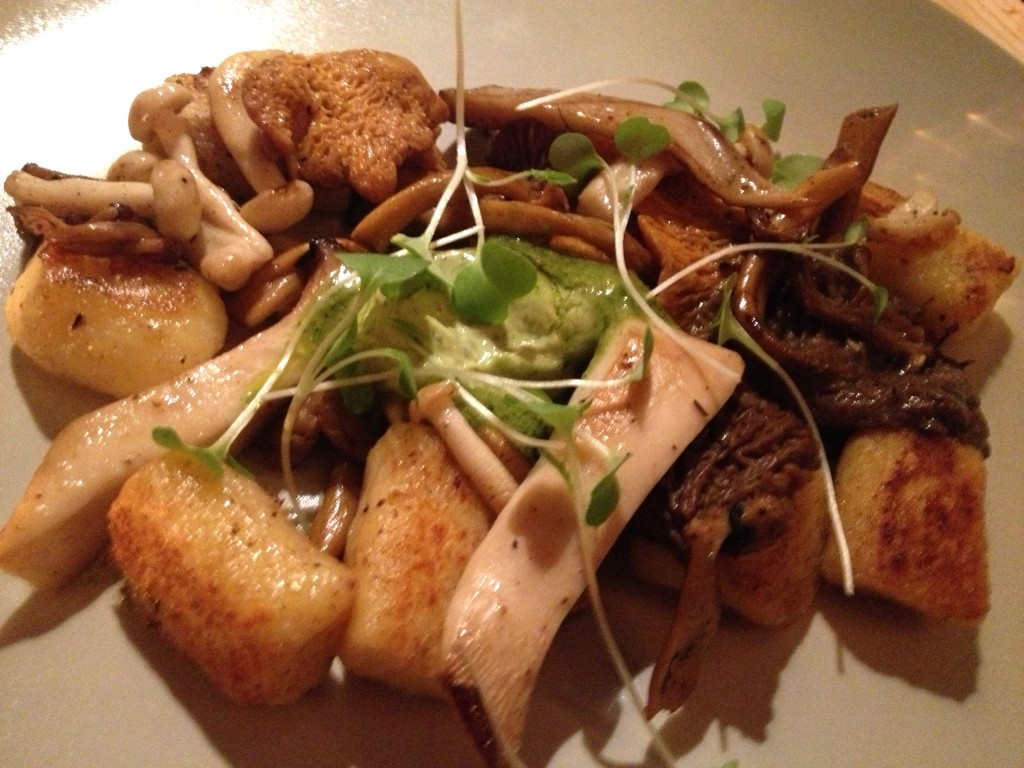 Mustard Gnocchi, Wild Mushrooms
