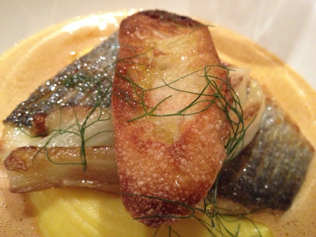 Roasted Dorade, saffron mash, fennel, Cornish soup, aioli