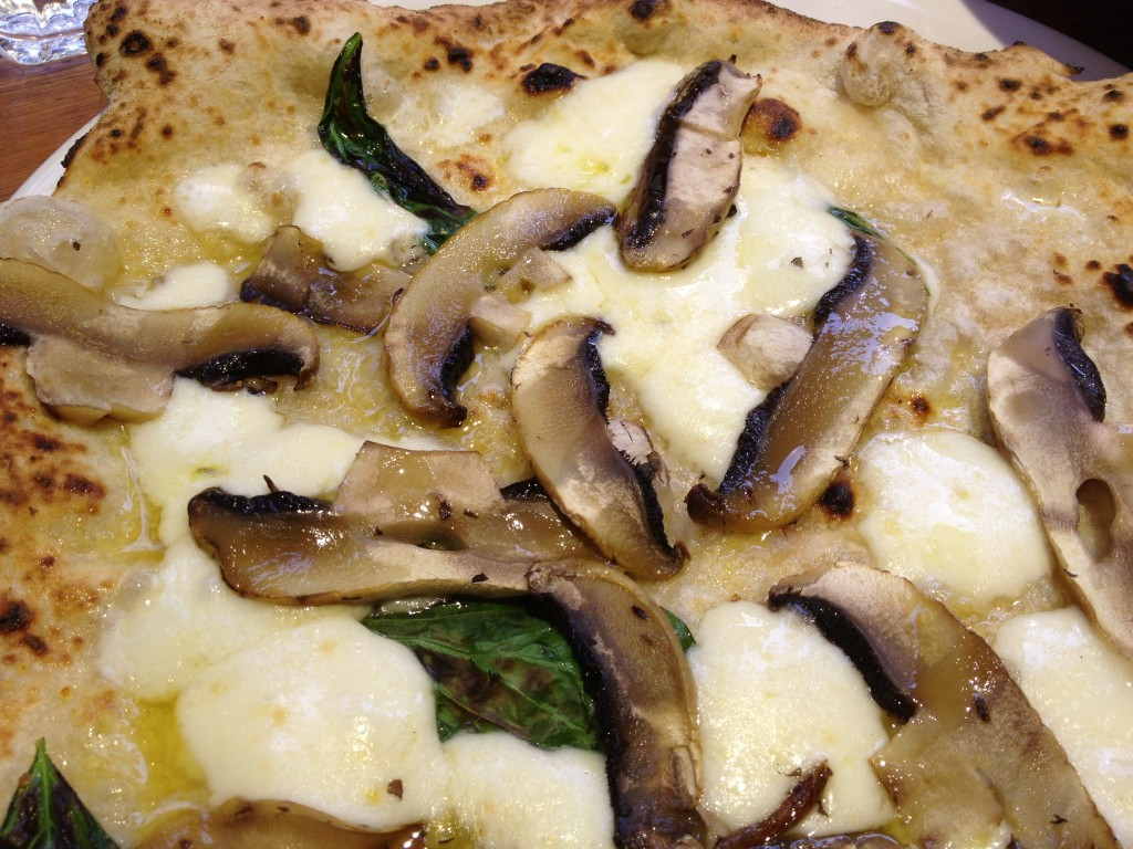 The portobello mushroom and truffle pizza
