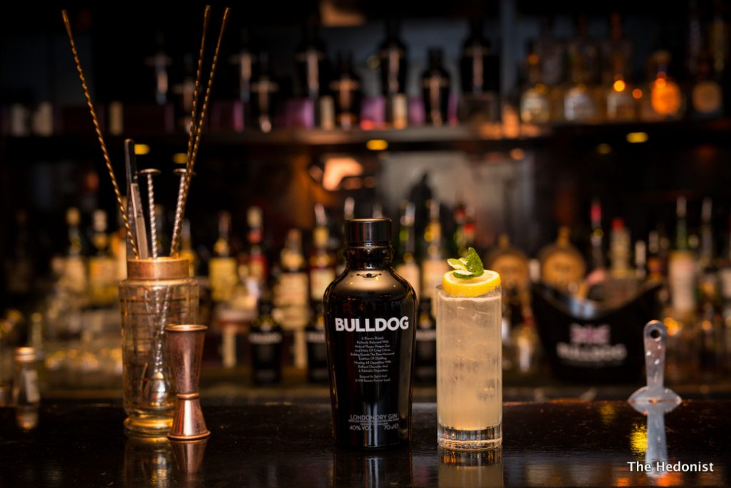 BULLDOG Tom Collins - landscape